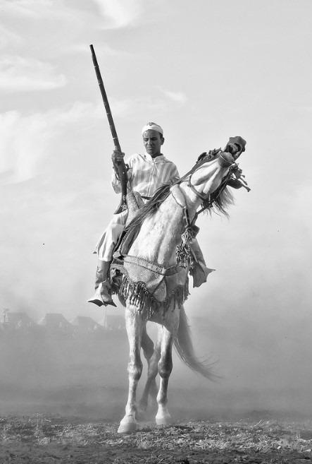 Amine Fassi – Fantasia Rider