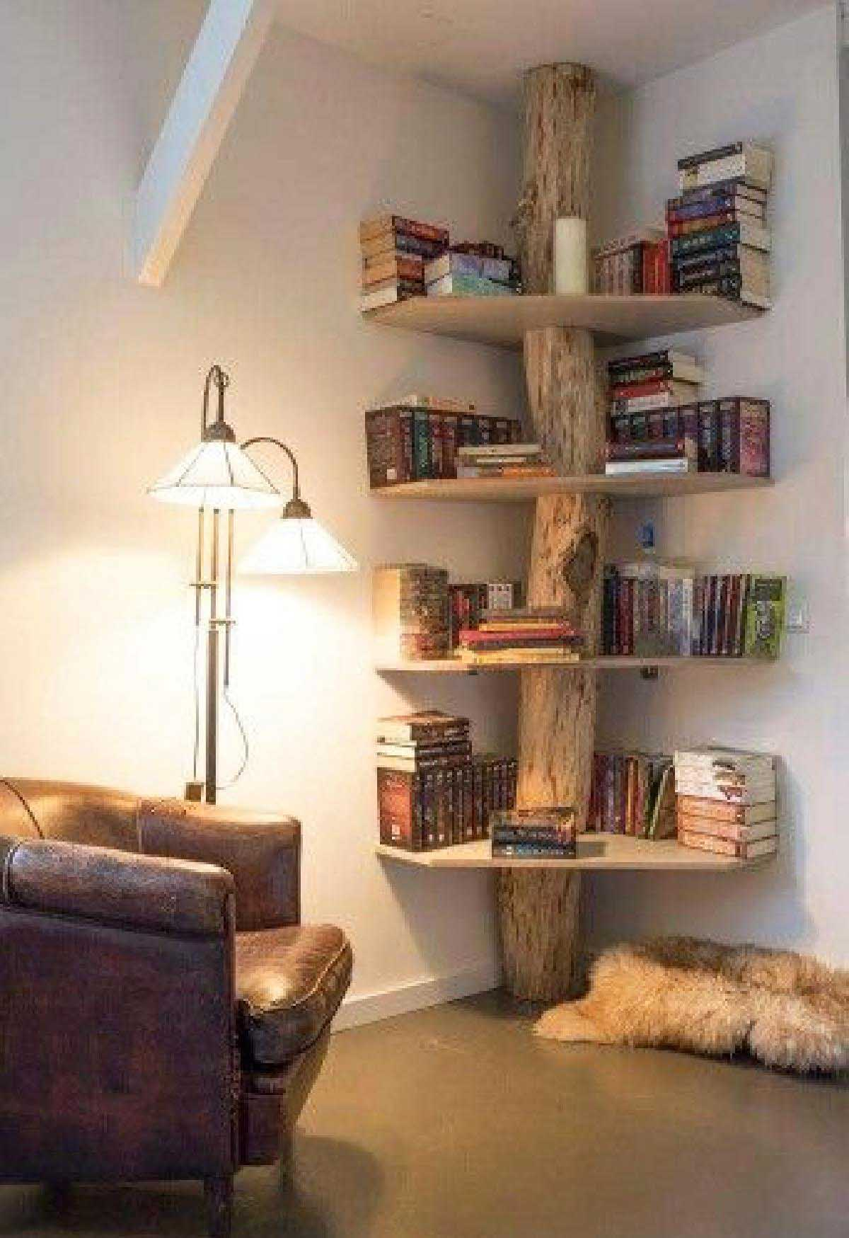 A Tree Trunk Corner Shelves
